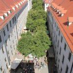 Lindenhof der Franckeschen Stiftungen